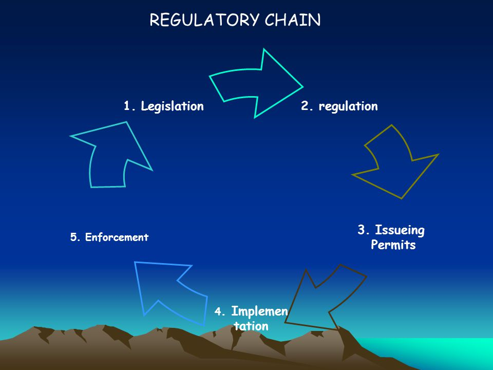 REGULATORY CHAIN