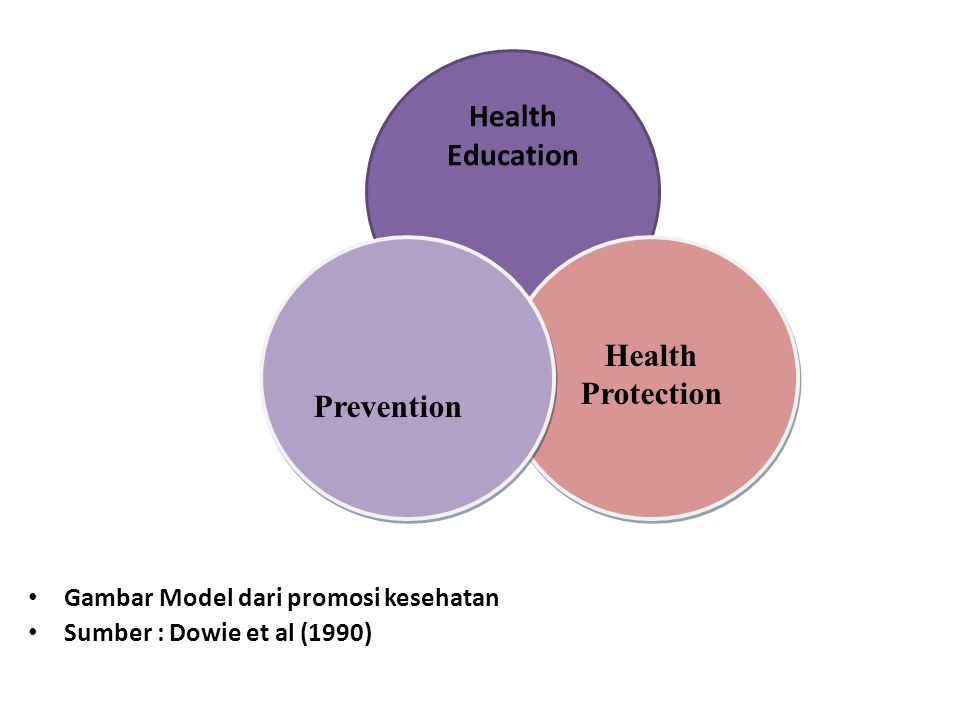 Health Education Health Protection Prevention