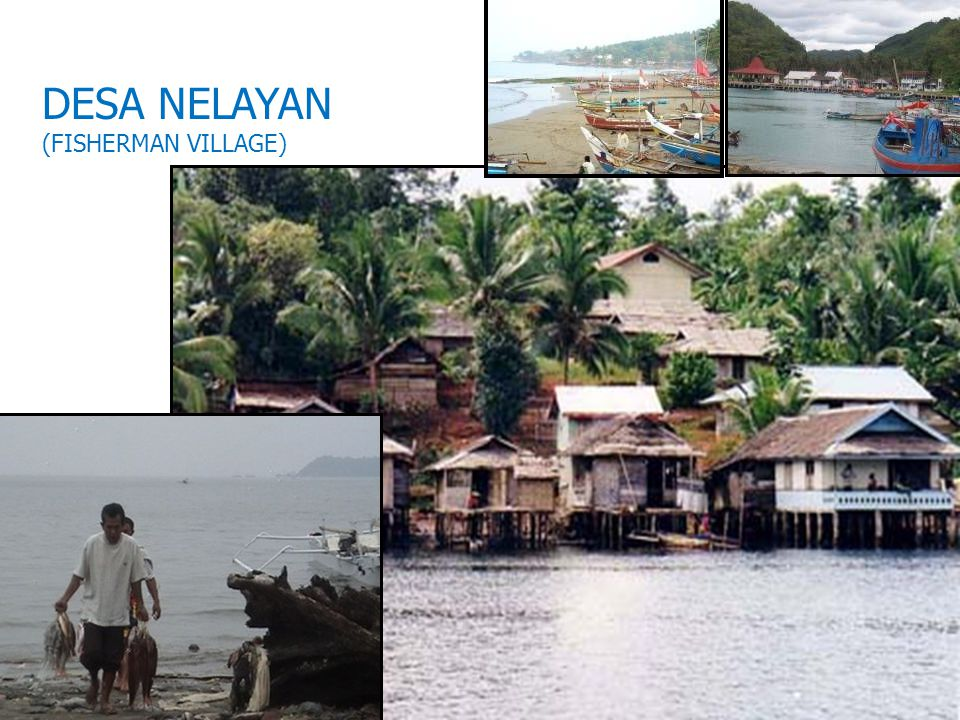 DESA NELAYAN (FISHERMAN VILLAGE) 11