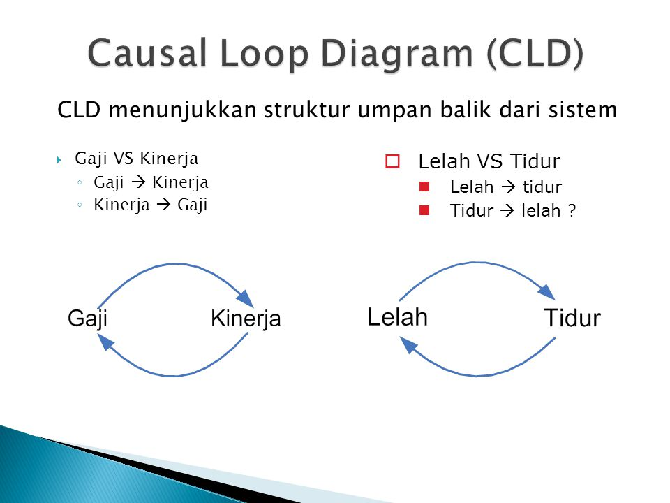 Causal Loop Diagram (CLD)