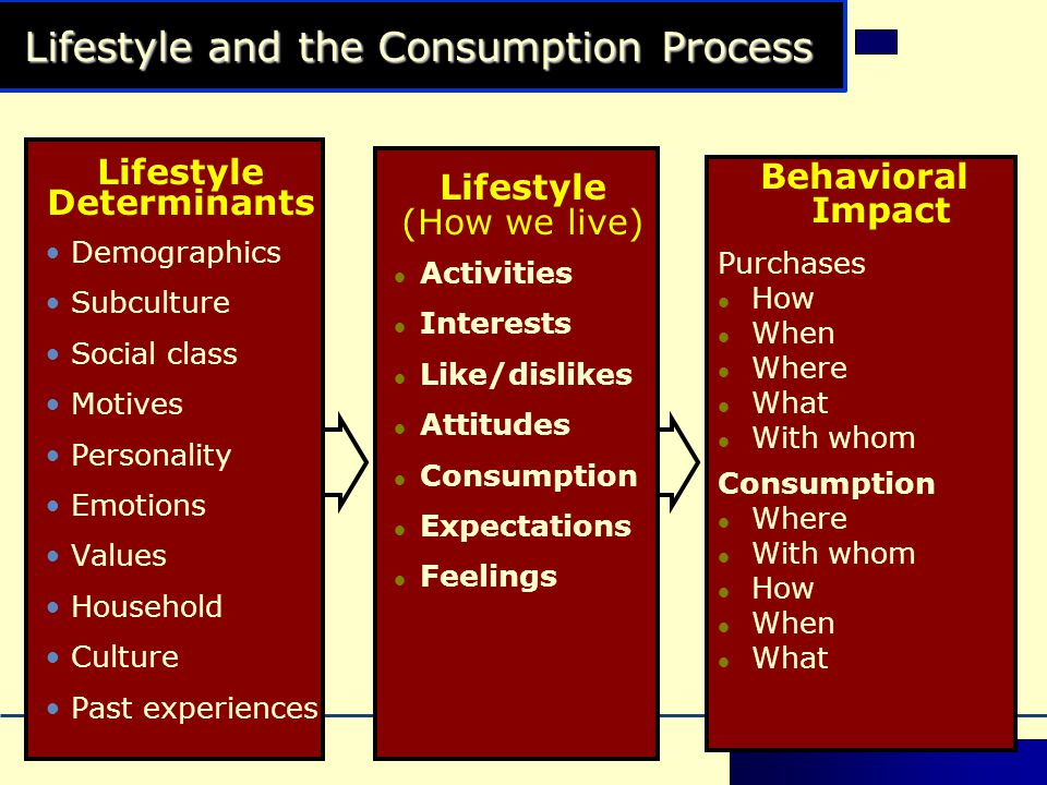 Lifestyle and the Consumption Process