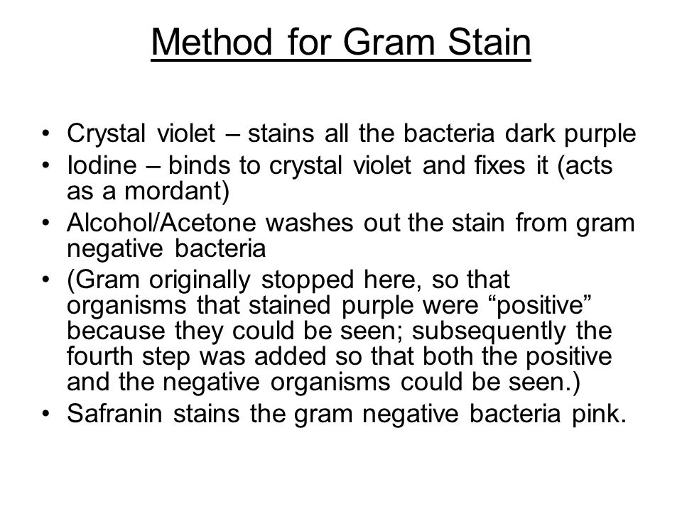 Method for Gram Stain Crystal violet – stains all the bacteria dark purple. Iodine – binds to crystal violet and fixes it (acts as a mordant)