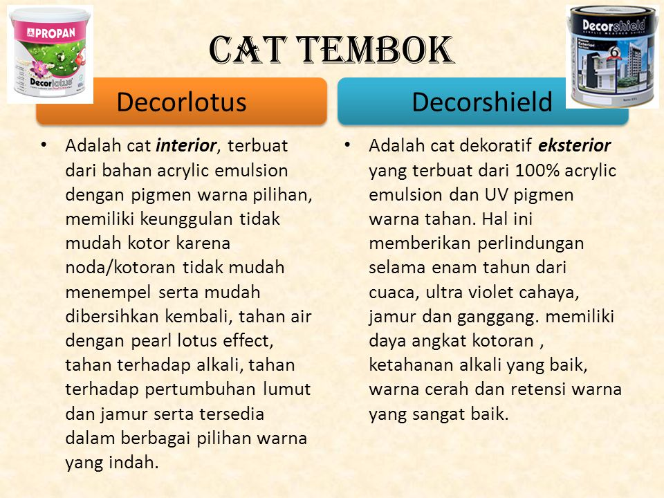 Cat Tembok Decorlotus Decorshield