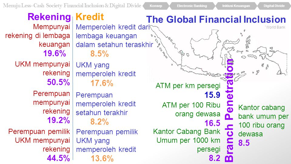 The Global Financial Inclusion