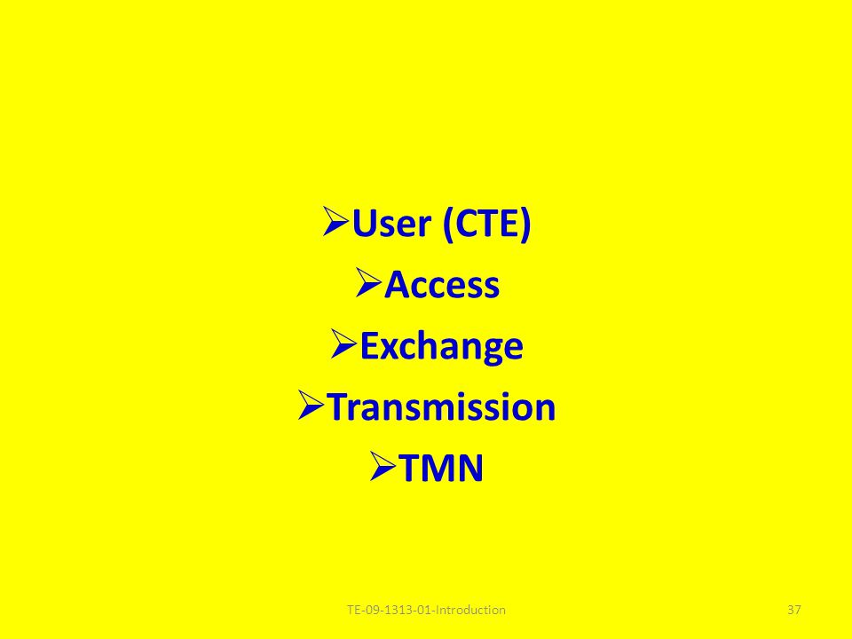 User (CTE) Access Exchange Transmission TMN