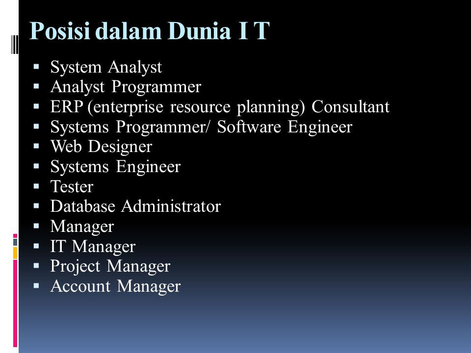 Posisi dalam Dunia I T System Analyst Analyst Programmer