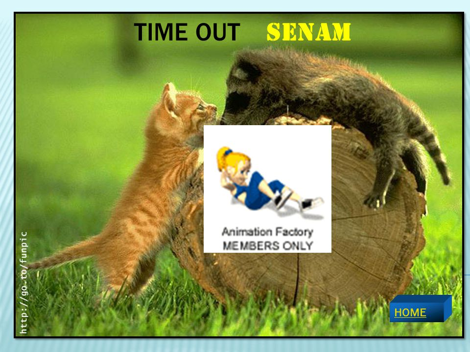 TIME OUT SENAM HOME