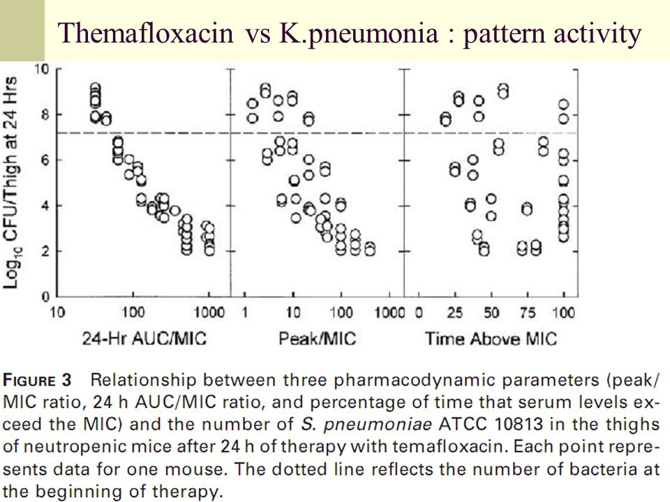 Themafloxacin vs K.pneumonia : pattern activity
