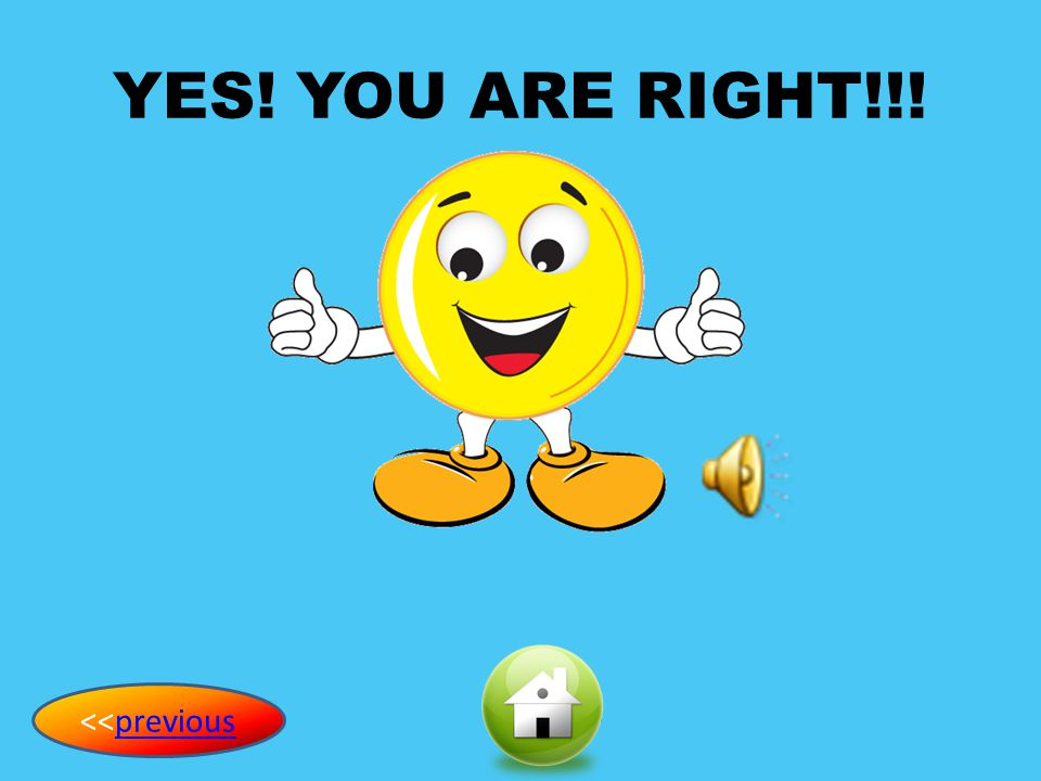 YES! YOU ARE RIGHT!!! <<previous