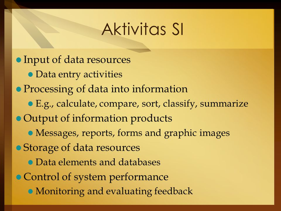 Aktivitas SI Input of data resources