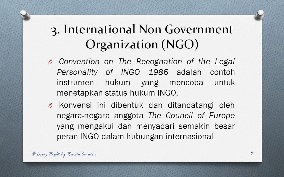 3. International Non Government Organization (NGO)