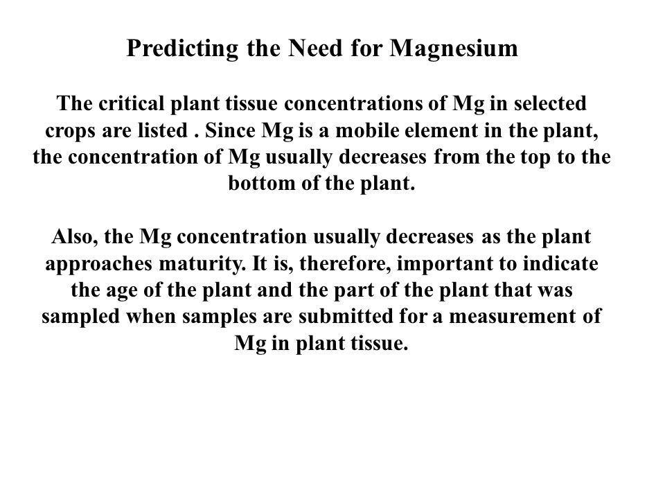 Predicting the Need for Magnesium