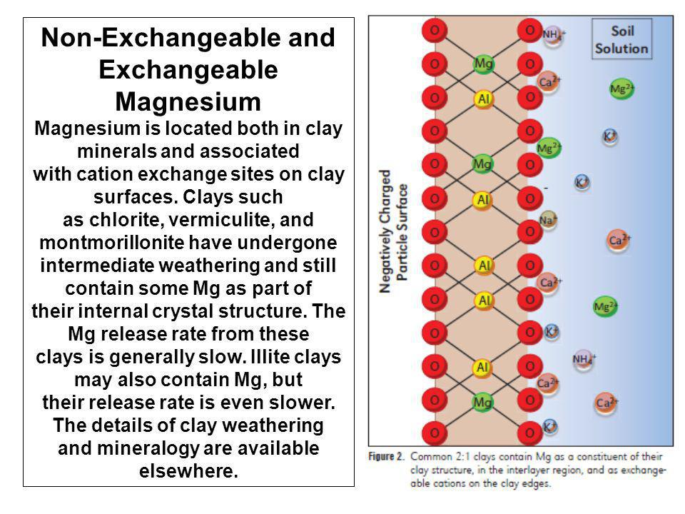 Non-Exchangeable and Exchangeable Magnesium