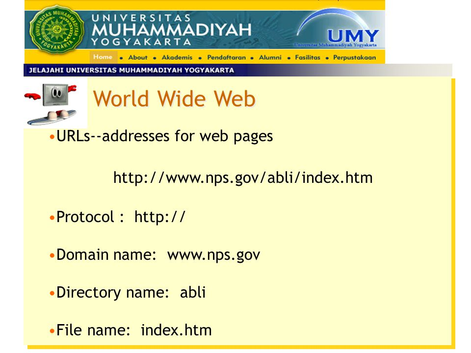 World Wide Web URLs--addresses for web pages