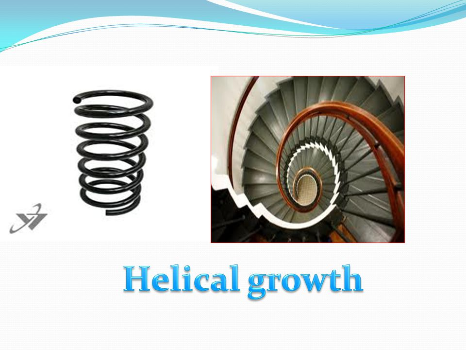Helical growth