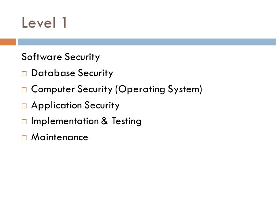 Level 1 Software Security Database Security