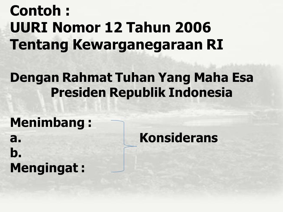 Presiden Republik Indonesia