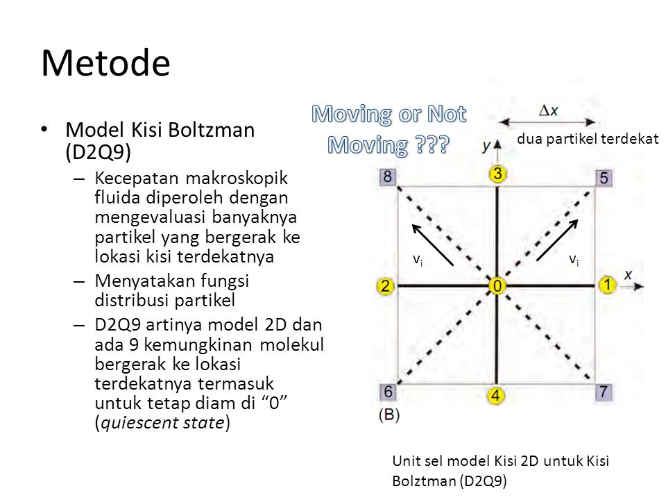 Metode Moving or Not Moving Model Kisi Boltzman (D2Q9)