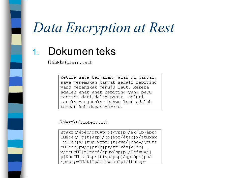 Data Encryption at Rest