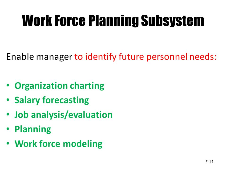 Work Force Planning Subsystem
