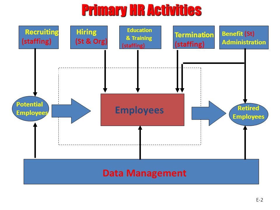 Primary HR Activities Employees Data Management Education