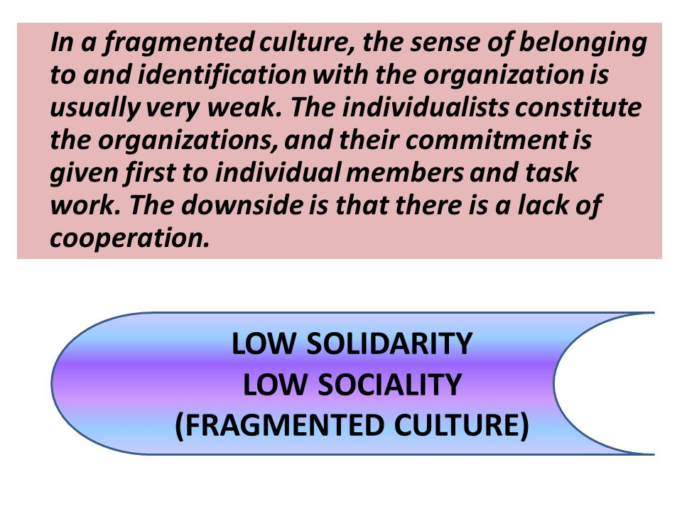LOW SOLIDARITY LOW SOCIALITY (FRAGMENTED CULTURE)