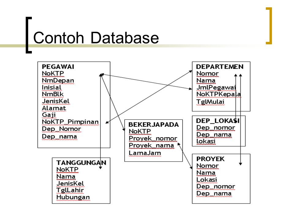 Contoh Database