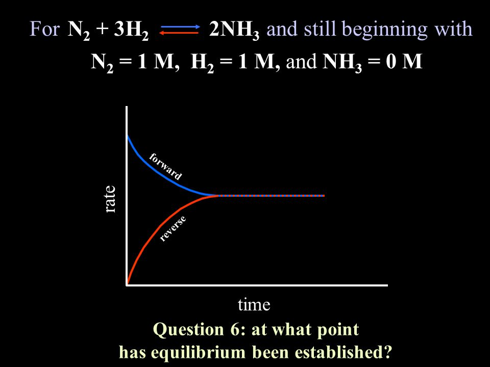 Question 6: at what point has equilibrium been established