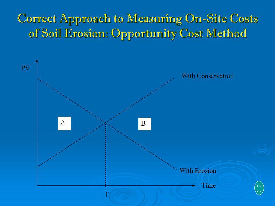 Correct Approach to Measuring On-Site Costs of Soil Erosion: Opportunity Cost Method