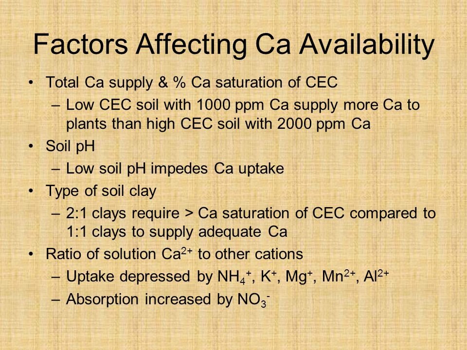Factors Affecting Ca Availability