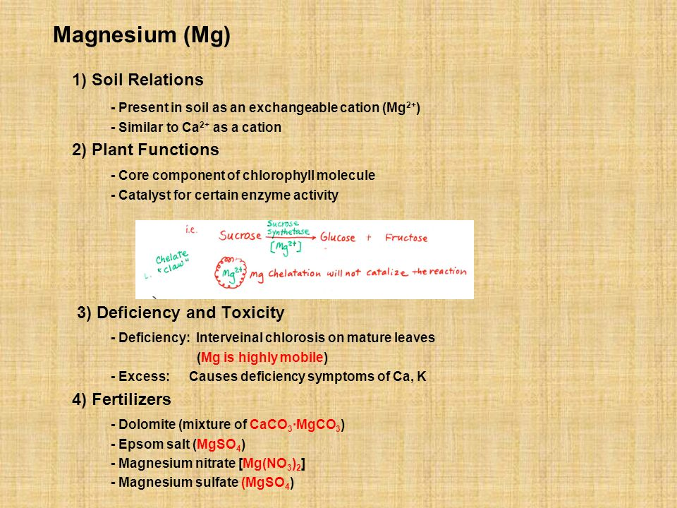1) Soil Relations Magnesium (Mg)