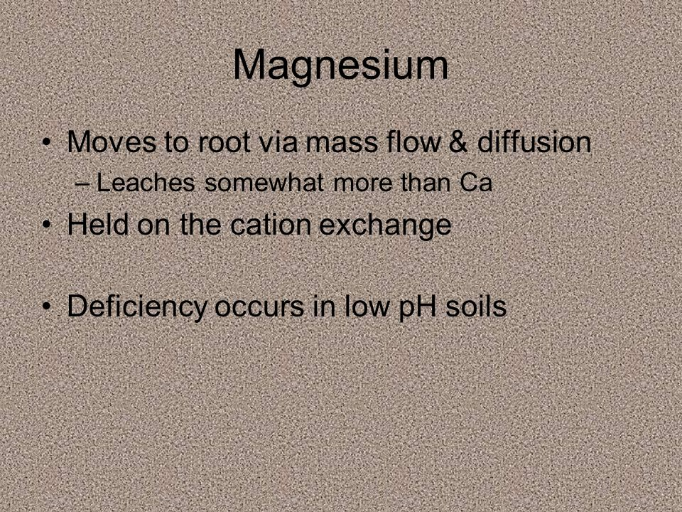 Magnesium Moves to root via mass flow & diffusion