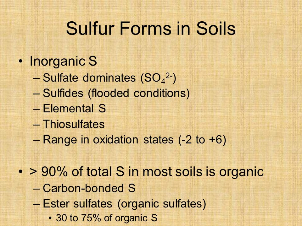 Sulfur Forms in Soils Inorganic S