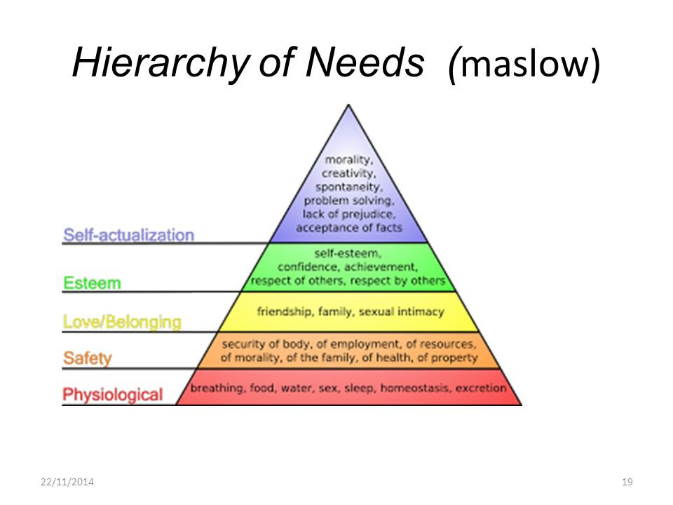 Hierarchy of Needs (maslow)