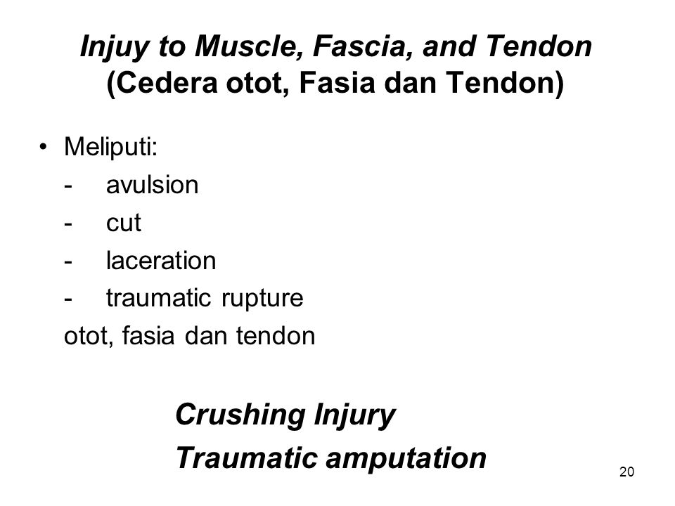 Injuy to Muscle, Fascia, and Tendon (Cedera otot, Fasia dan Tendon)