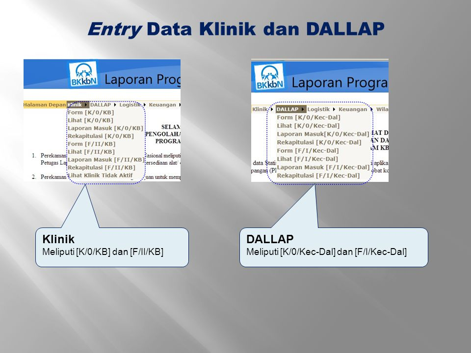 Entry Data Klinik dan DALLAP