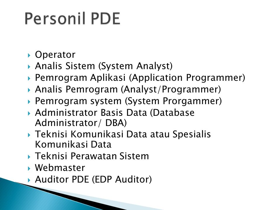 Personil PDE Operator Analis Sistem (System Analyst)