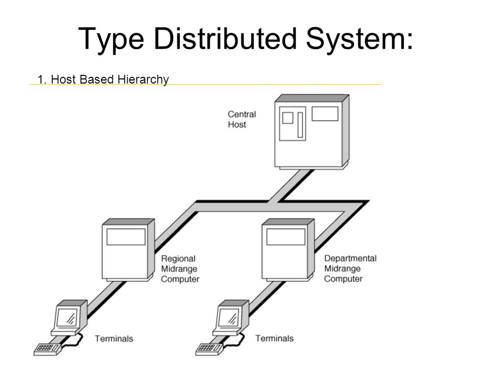 Type Distributed System: