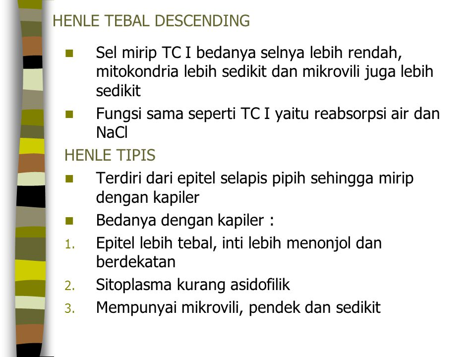 HENLE TEBAL DESCENDING