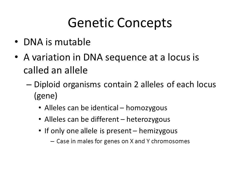 Genetic Concepts DNA is mutable