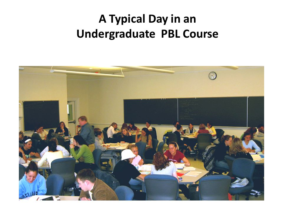 A Typical Day in an Undergraduate PBL Course