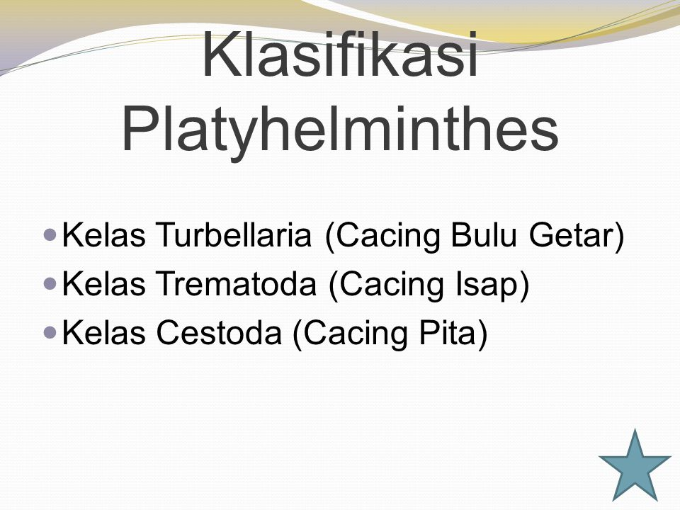 Klasifikasi Platyhelminthes