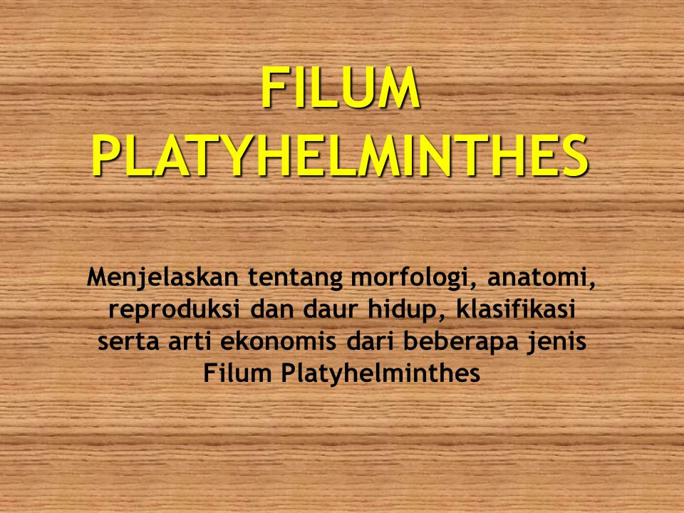FILUM PLATYHELMINTHES