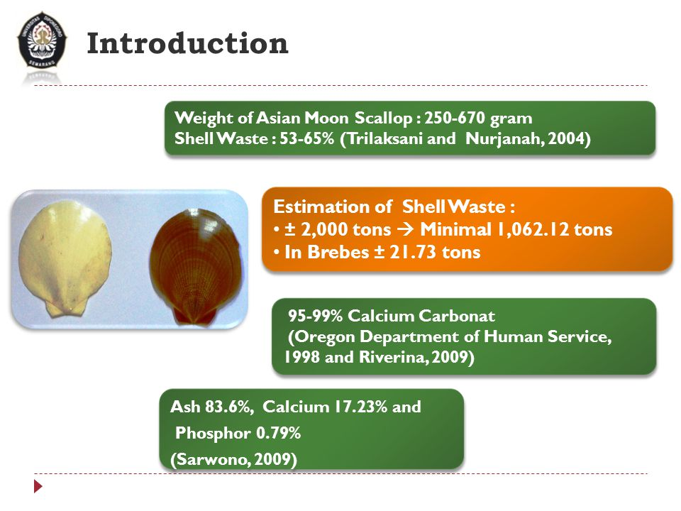 Introduction Estimation of Shell Waste :