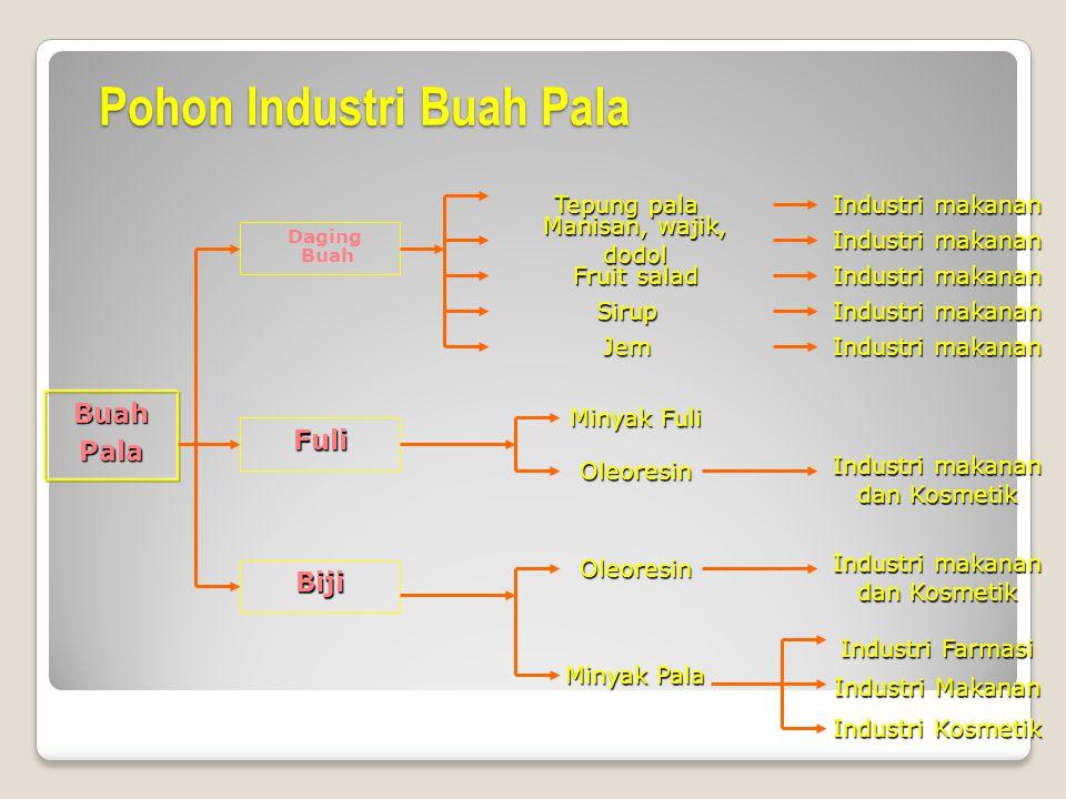 Agroindustri dwi purnomo ppt download pohon industri buah pala ccuart Images