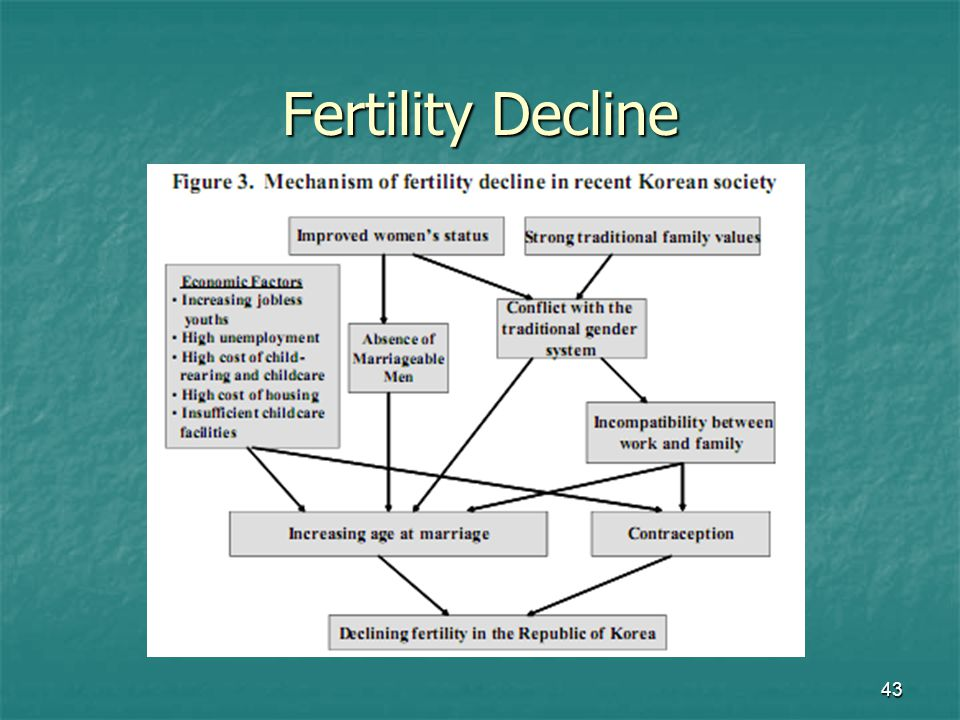 Fertility Decline