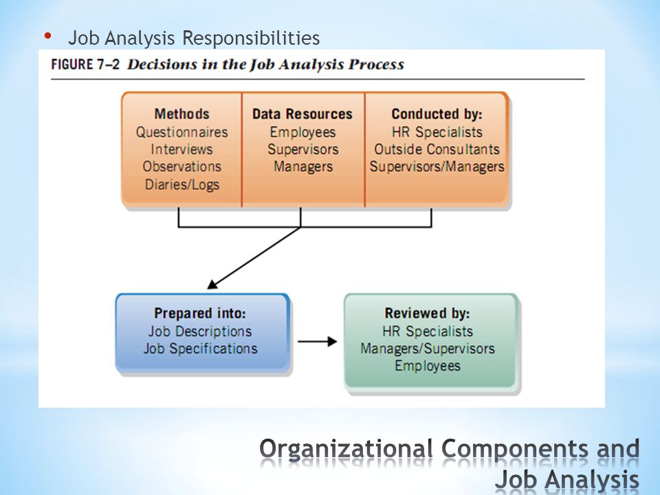 Organizational Components and Job Analysis