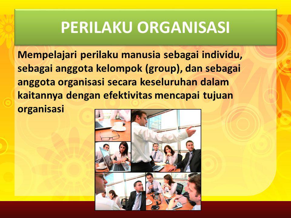 Perilaku Organisasi Makalah