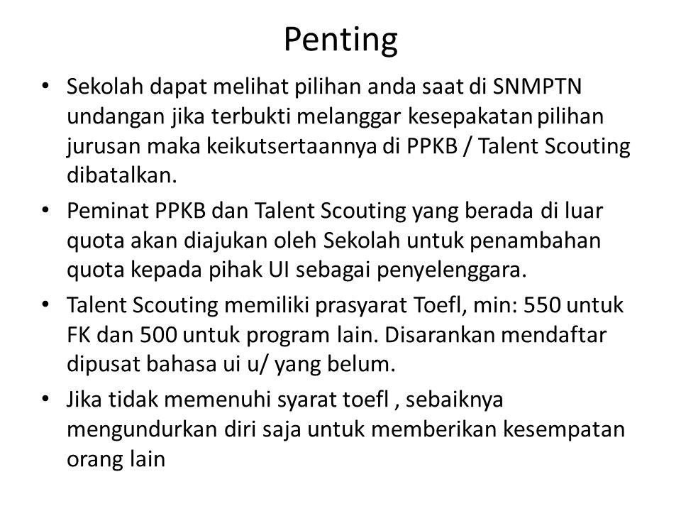 essay untuk talent scouting ui