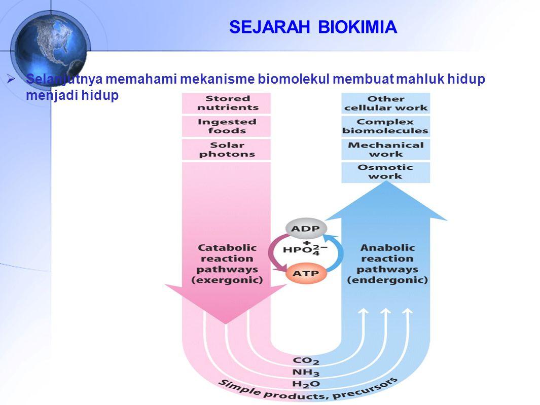 Sejarah dan perkembangan biokimia ppt download 11 sejarah biokimia selanjutnya memahami mekanisme biomolekul membuat mahluk hidup menjadi hidup ccuart Images